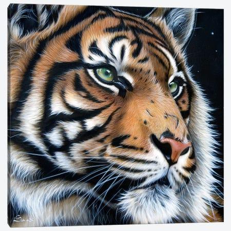 Sumatran Canvas Print #SAN71} by Sandi Baker Canvas Print