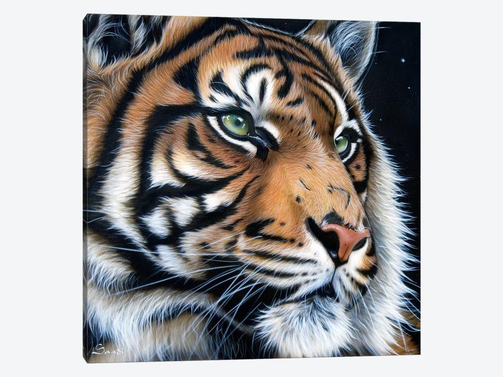 Sumatran by Sandi Baker 1-piece Canvas Art Print