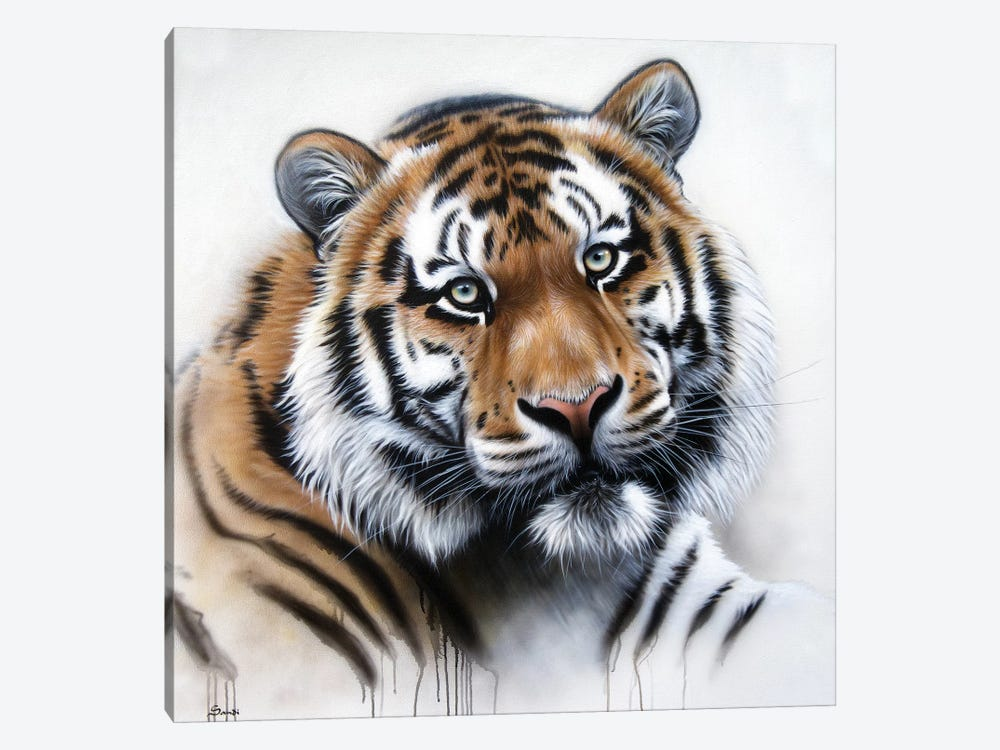 Tiger Portrait II by Sandi Baker 1-piece Canvas Artwork