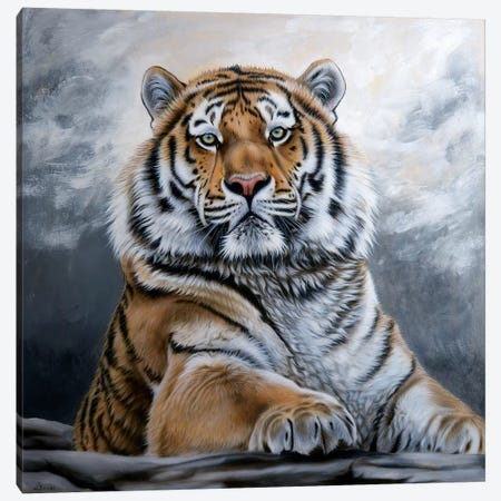 Untamed 3-Piece Canvas #SAN89} by Sandi Baker Canvas Art