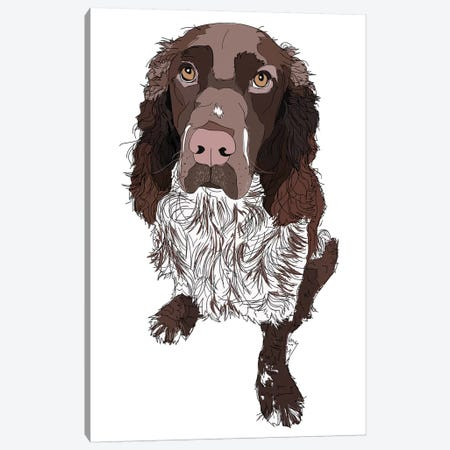 Springer Spaniel Canvas Print #SAP104} by Sketch and Paws Art Print