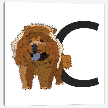 C Is For Chow Chow Canvas Print #SAP112} by Sketch and Paws Canvas Art Print