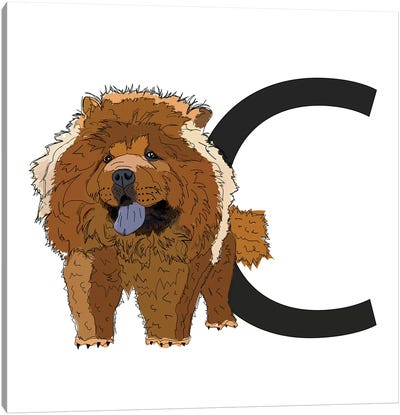 C Is For Chow Chow Canvas Art Print