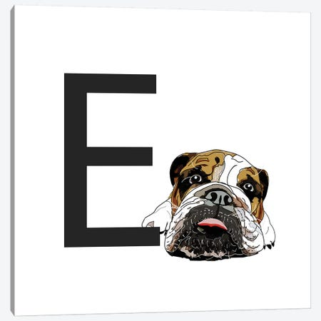 E Is For English Bulldog Canvas Print #SAP114} by Sketch and Paws Canvas Art