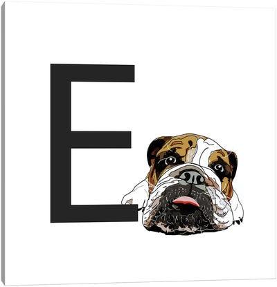 E Is For English Bulldog Canvas Art Print