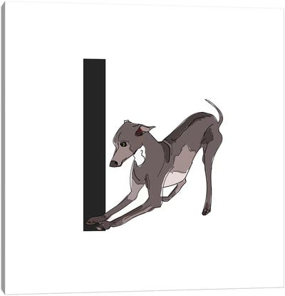 I Is For Italian Greyhound Canvas Art Print
