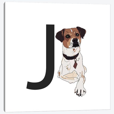 J Is For Jack Russell Terrier Canvas Print #SAP119} by Sketch and Paws Art Print