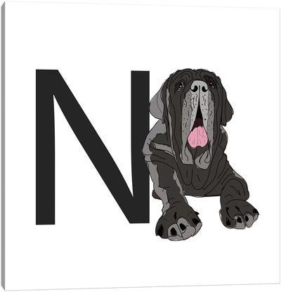 N Is For Neapolitan Mastiff Canvas Art Print
