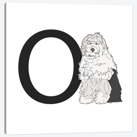 O Is For Old English Sheepdog Canvas Print #SAP124} by Sketch and Paws Art Print