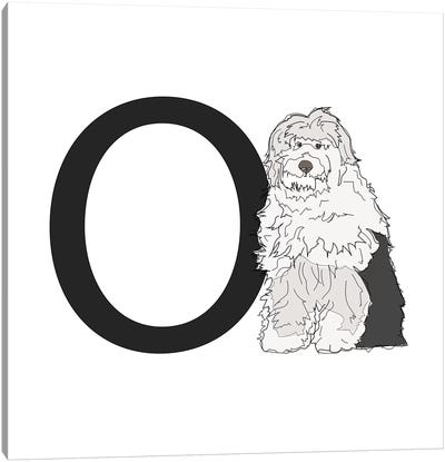 O Is For Old English Sheepdog Canvas Art Print