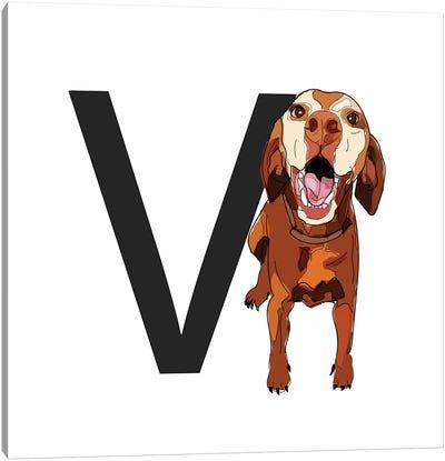V Is For Vizsla Canvas Art Print