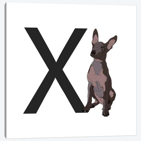 X Is For Xoloitzcuintli (Xolo) Canvas Print #SAP133} by Sketch and Paws Canvas Art Print