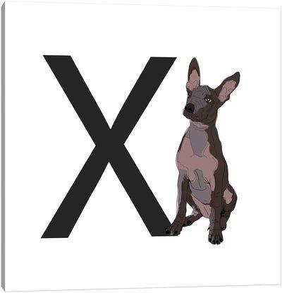 X Is For Xoloitzcuintli (Xolo) Canvas Art Print