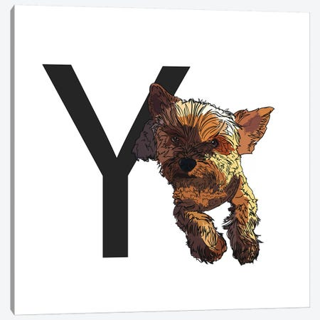 Y Is For Yorkshire Terrier Canvas Print #SAP134} by Sketch and Paws Canvas Art