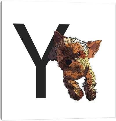 Y Is For Yorkshire Terrier Canvas Art Print