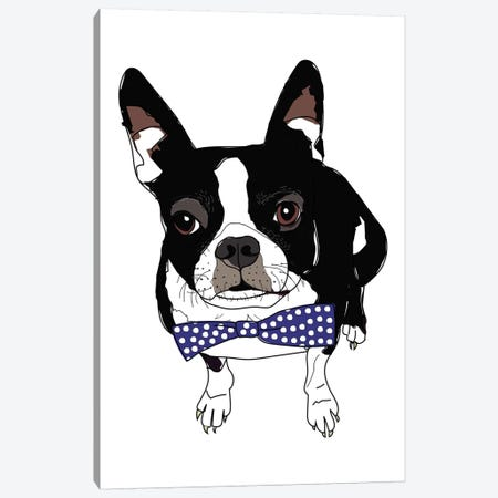 Boston With Bowtie Canvas Print #SAP21} by Sketch and Paws Canvas Artwork