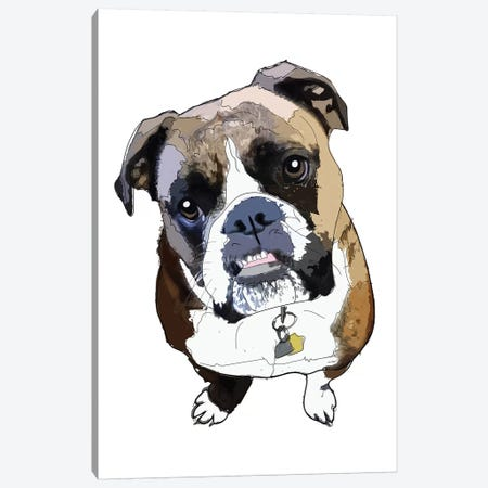 Boxer Canvas Print #SAP22} by Sketch and Paws Canvas Art