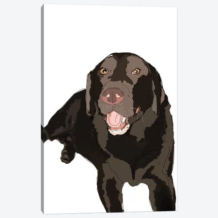Chocolate Lab Canvas Print #SAP26} by Sketch and Paws Canvas Art Print
