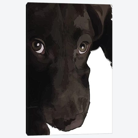 Chocolate Lab Puppy Canvas Print #SAP27} by Sketch and Paws Art Print