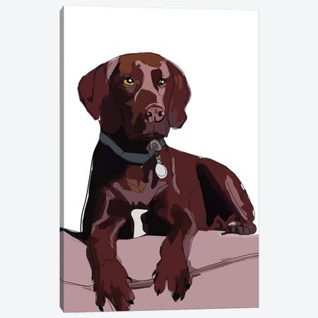 Chocolate Lab Canvas Print #SAP28} by Sketch and Paws Canvas Artwork