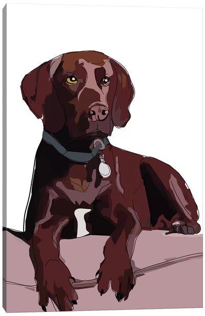 Chocolate Lab Canvas Art Print