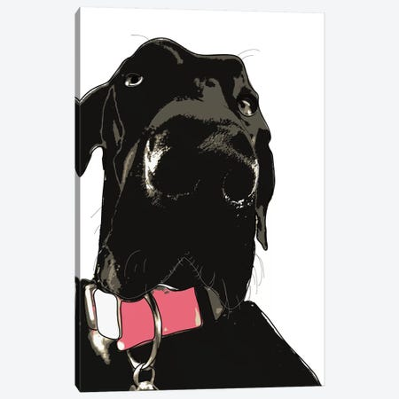 Coaly The Great Dane Canvas Print #SAP31} by Sketch and Paws Canvas Art Print
