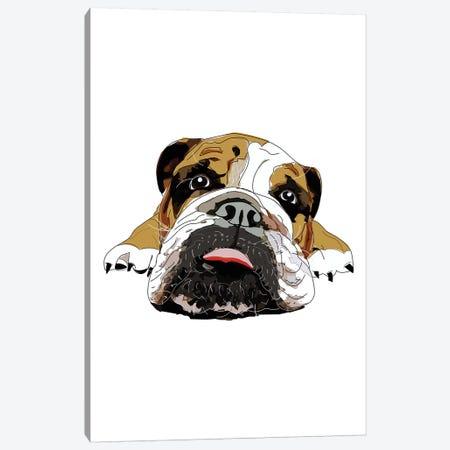 English Bulldog Canvas Print #SAP41} by Sketch and Paws Canvas Wall Art