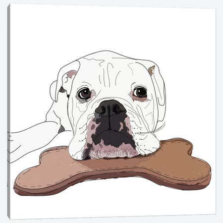 English Bulldog With Toy Canvas Print #SAP43} by Sketch and Paws Canvas Artwork