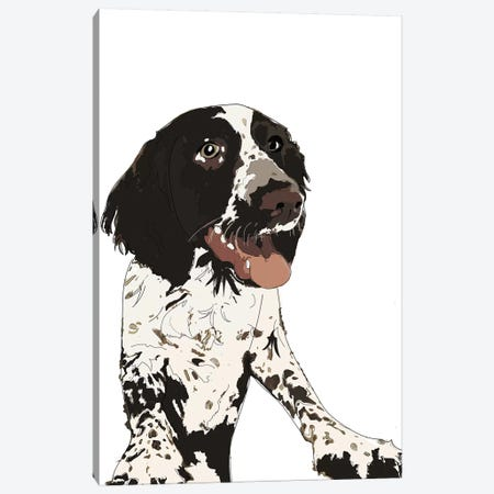 English Springer Spaniel II Canvas Print #SAP45} by Sketch and Paws Canvas Print