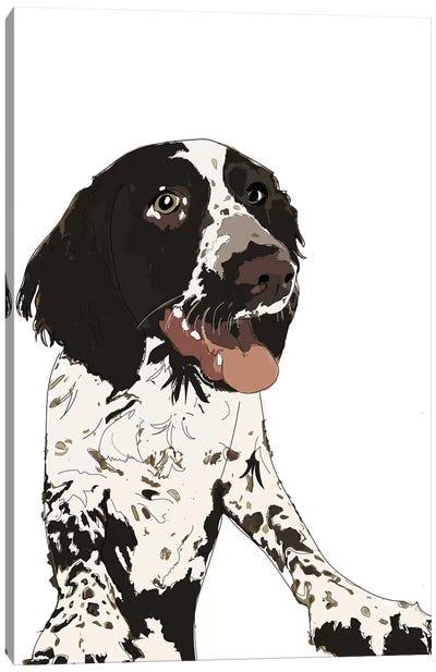 English Springer Spaniel II Canvas Art Print