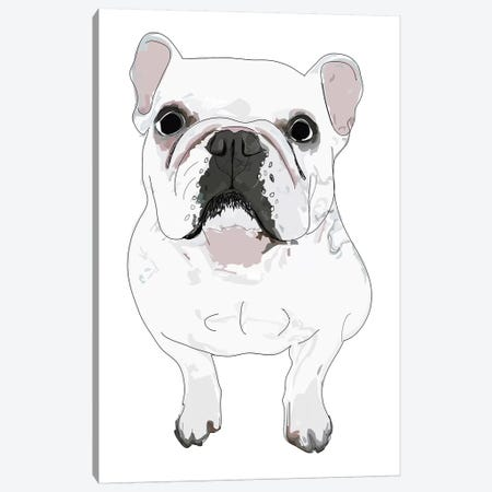 French Bulldog Canvas Print #SAP46} by Sketch and Paws Canvas Art Print