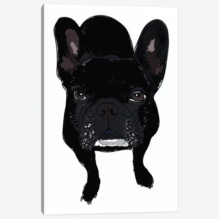 Frenchie Black Canvas Print #SAP47} by Sketch and Paws Canvas Art Print