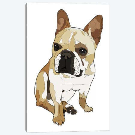 Frenchie White Canvas Print #SAP49} by Sketch and Paws Canvas Art
