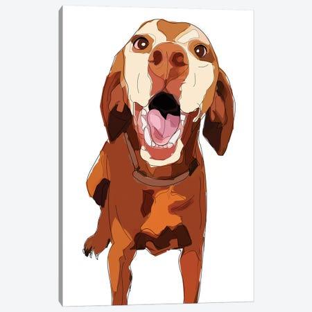 Beautiful Vizsla Canvas Print #SAP5} by Sketch and Paws Canvas Art Print