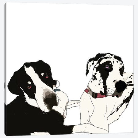 Great Danes Canvas Print #SAP60} by Sketch and Paws Canvas Wall Art