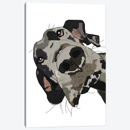 In Your Face Great Dane Canvas Print #SAP75} by Sketch and Paws Canvas Art