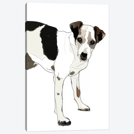 Jack Russell Terrier Canvas Print #SAP76} by Sketch and Paws Canvas Artwork