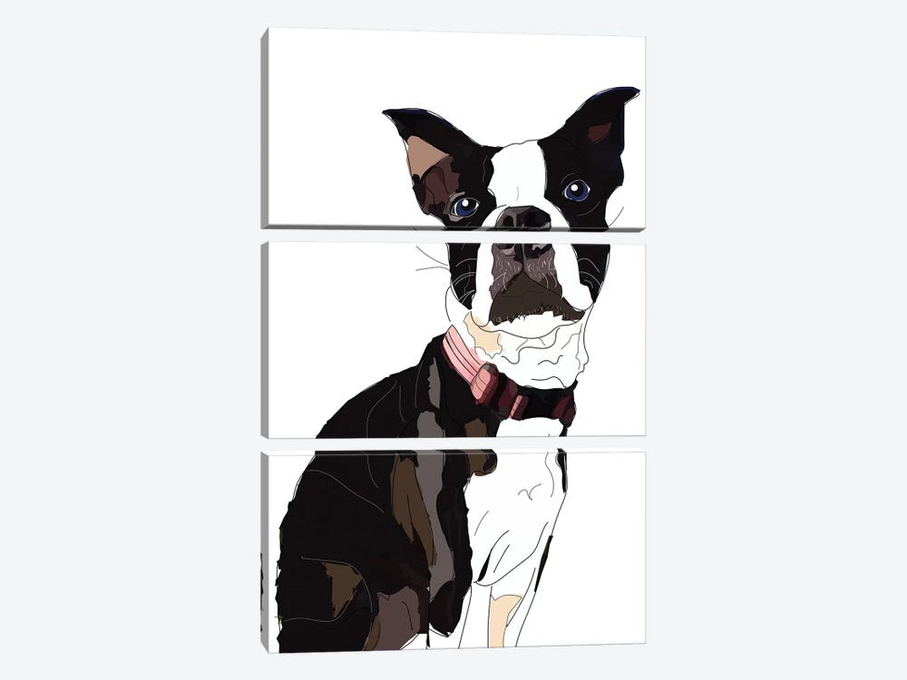 Nadias Boxer by Sketch and Paws 3-piece Canvas Art