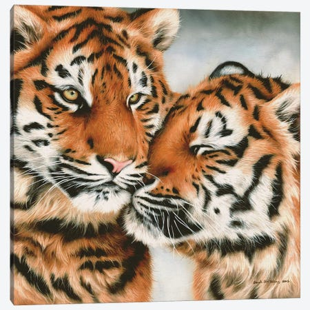 Tiger Cubs Snuggle Canvas Print #SAS101} by Sarah Stribbling Canvas Wall Art