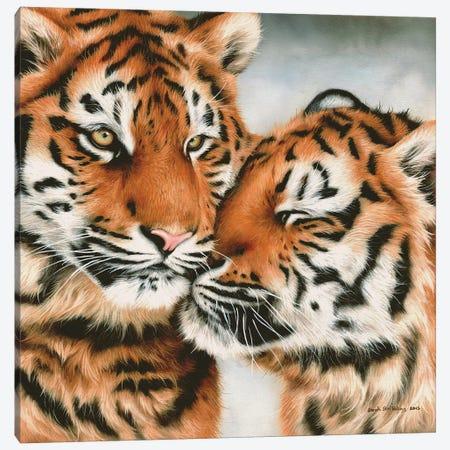 Tiger Cubs Snuggle Canvas Print #SAS101} by Sarah Stribbling Canvas Wall Art