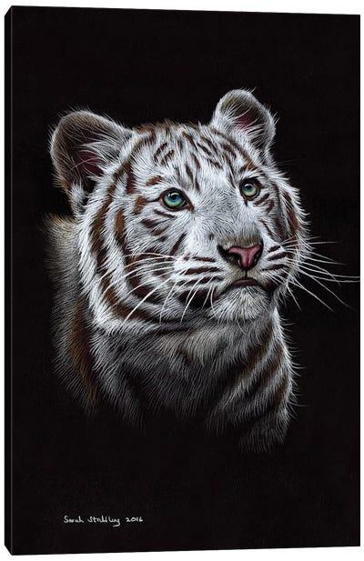 White Tiger III Canvas Art Print