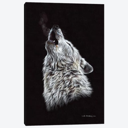 White Wolf Howling Canvas Print #SAS110} by Sarah Stribbling Art Print