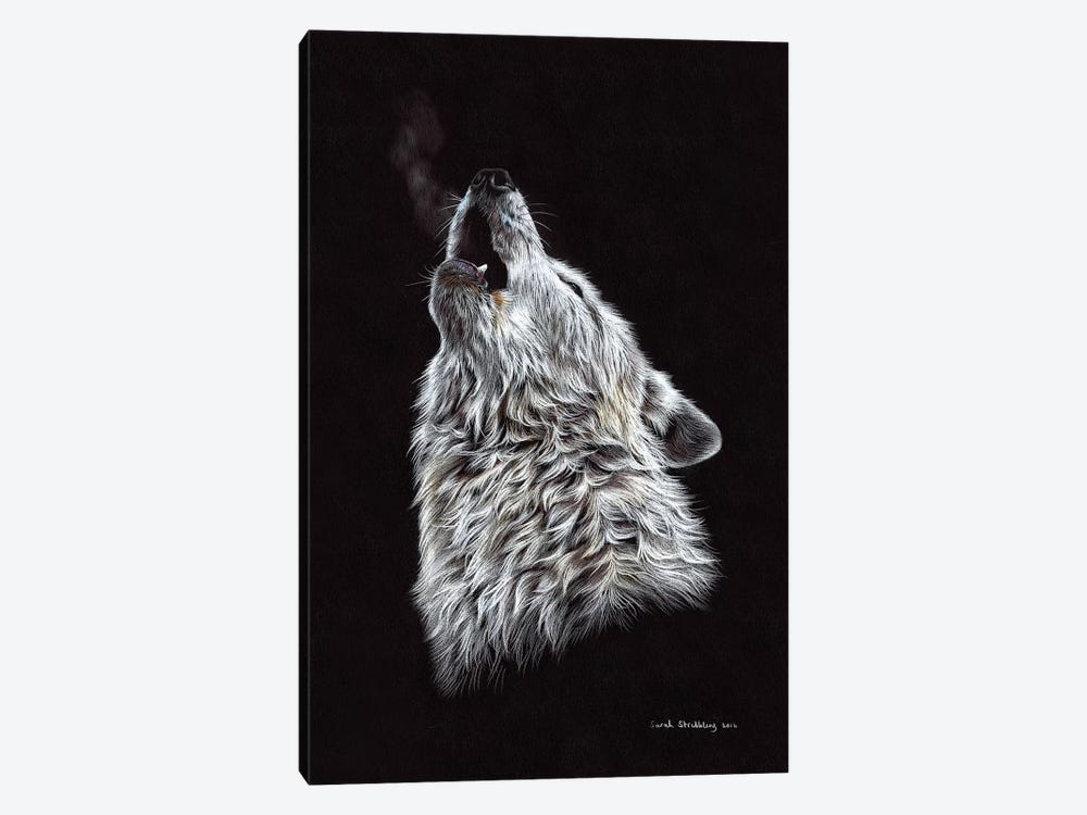 White Wolf Howling by Sarah Stribbling 1-piece Canvas Art Print