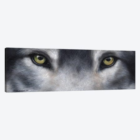 Wolf Eyes 3-Piece Canvas #SAS112} by Sarah Stribbling Canvas Art Print