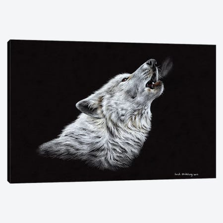 Wolf Howling Canvas Print #SAS113} by Sarah Stribbling Canvas Art Print