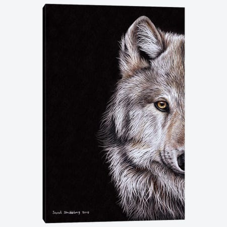 Wolf I Canvas Print #SAS114} by Sarah Stribbling Canvas Art