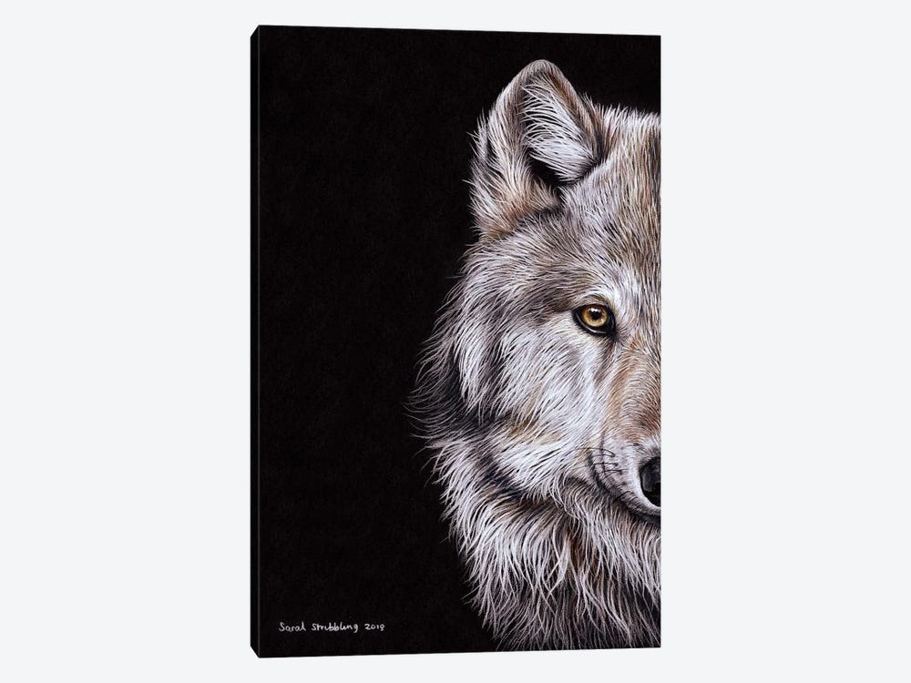 Wolf I by Sarah Stribbling 1-piece Canvas Print