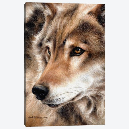 Wolf II Canvas Print #SAS115} by Sarah Stribbling Canvas Artwork