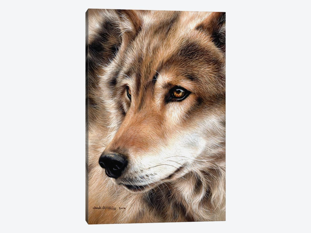 Wolf II by Sarah Stribbling 1-piece Canvas Art