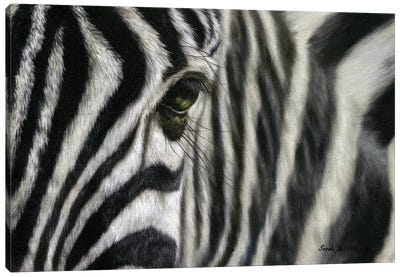 Zebra I Canvas Art Print